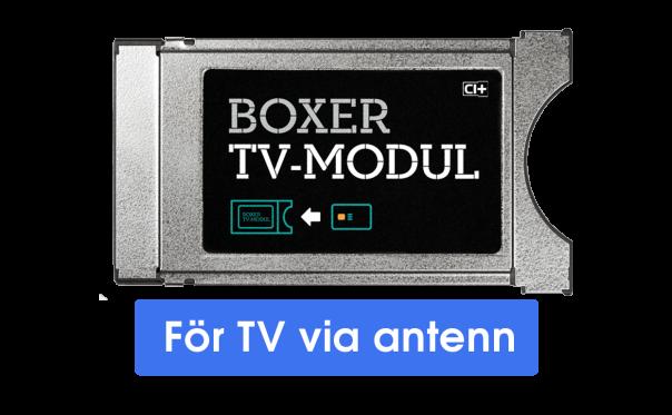 Kendte Boxer TV-Modul | Boxer OI-15